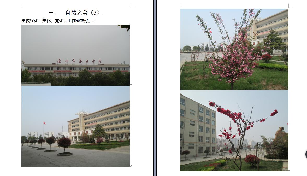 美好校园之自然之美——绿化美化亮化
