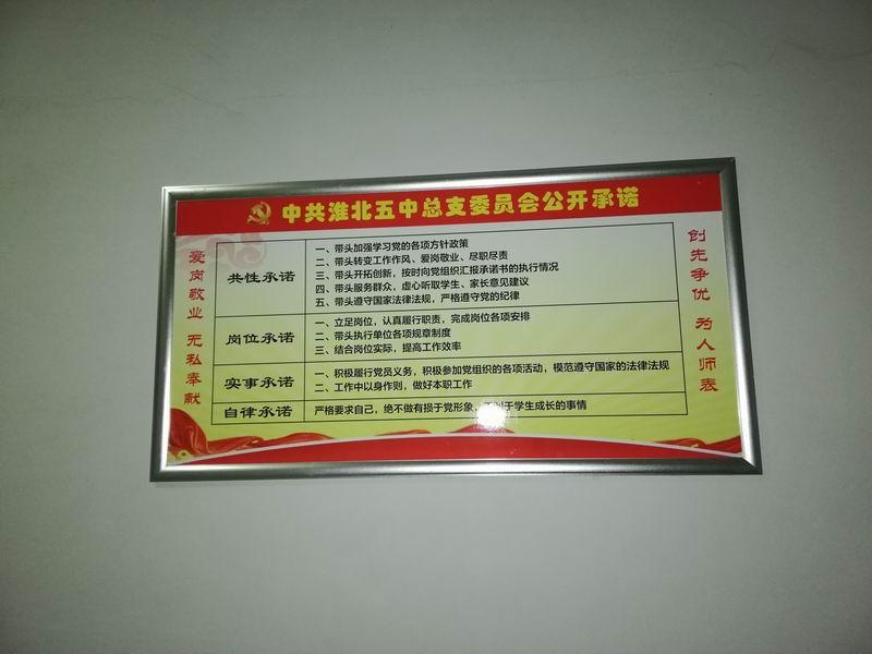 "www.qg111.com党总支开展""承诺上墙亮"