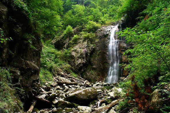 我国新建十六处国家级林业自然保护区