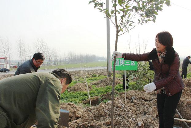 濉溪县巾帼志愿者参加义务植树活动